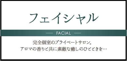 フェイシャル FACIAL 完全個室のプライベートサロン。アロマの香りと共に素敵な癒しのひとときを…